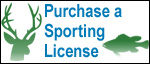 Purchasing a sporting license